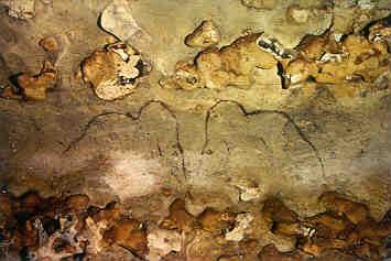 tierdarstellungen aus den höhlenmalereien