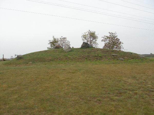 pfahlberg magdeburg